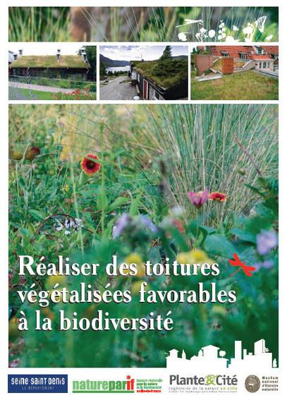 Toitures végétalisées : parure verte ou écosystème urbain ? | Chronique d'un pays où il ne se passe rien... ou presque ! | Scoop.it