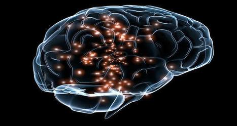 A Standard for Neuroscience Data | Social Neuroscience Advances | Scoop.it