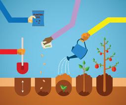 'Hands-in-the-Dirt' Learning | School Gardening Resources | Scoop.it