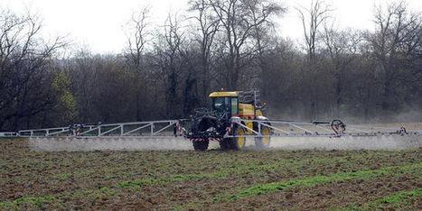 Pesticides: le laxisme de l'Europe épinglé | la presse AGRIcole | Scoop.it