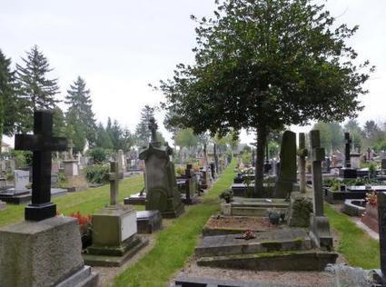 Contribuez à l'étude sur les cimetières menée par Plante & Cité | Sciences participatives, pratiques collaboratives | Scoop.it