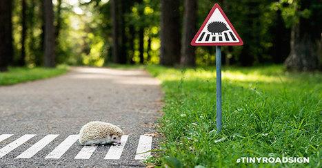 Des panneaux de signalisation miniatures installés en pleine ville pour les animaux | Immobilier | Scoop.it