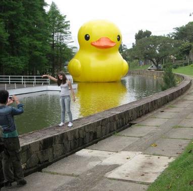 Giant Rubber Duck | Urban Design | Scoop.it