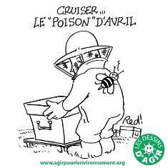 Le pesticide Cruiser interdit - Languedoc Roussillon - France 3   Abeilles, intoxications et informations   Scoop.it