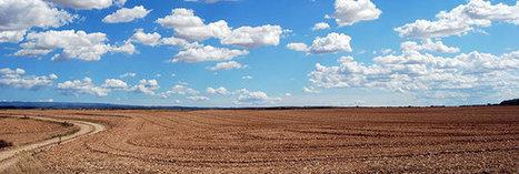 Sols : et si on stockait le carbone dans nos champs de blé ? | Pour une agriculture et une alimentation respectueuses des hommes et de l'environnement | Scoop.it