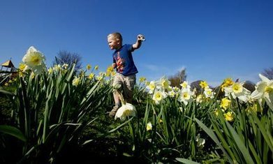 The increasingly rare sight in UK's green spaces – children playing | Children | Scoop.it