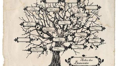 Généalogie : partir mieux armé à la recherche de ses ancêtres - Le Figaro | Rhit Genealogie | Scoop.it