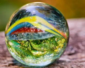 Biodiversita': la Convenzione Onu raddoppia le risorse per la tutela ambientale | Agevolazioni, Investimenti, Sviluppo | Scoop.it