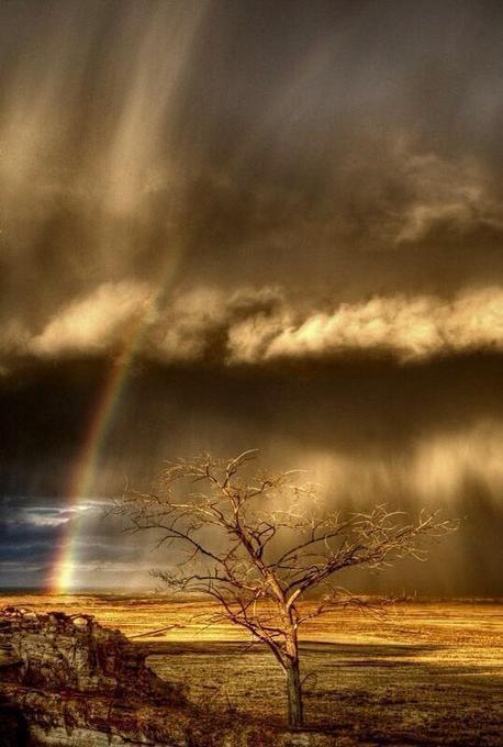 @jlynn_gurl: In your storm & standing ... | Reflejos | Scoop.it