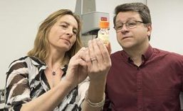 Un gel intelligent pour attaquer le cancer - UdeMNouvelles | Research  | Canada | 21st Century Innovative Technologies and Developments as also discoveries, curiosity ( insolite)... | Scoop.it