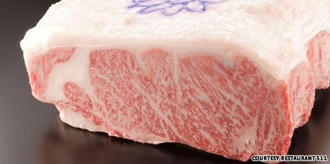 A cut above the rest: Japan's legendary Kobe beef | Foodie | Scoop.it