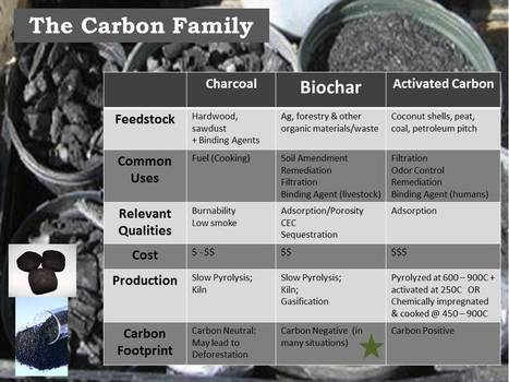 Finger Lakes Biochar - Biochar 101 | BioChar | Scoop.it