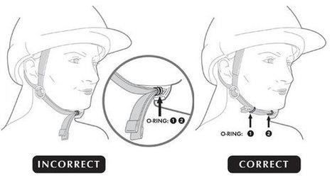 Proper Helmet Fitting | Horse and Rider Awareness | Scoop.it