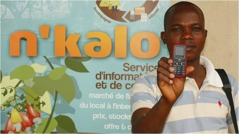 L'intégration des petits agriculteurs au marché mondial via les TIC | Youth agriculture and ICT | Scoop.it