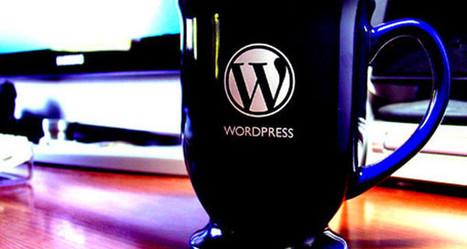 Google Analytics et WordPress : l'accord parfait ? | Community Management | Scoop.it