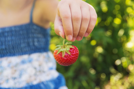 Is Feeding Your Child Organic Food Enough to Reduce the Pesticides in Her Body? | Civil Eats | Food issues | Scoop.it