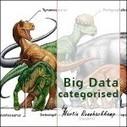 Big Data Categorised » Martin's Insights | BigDataUniverse | Scoop.it