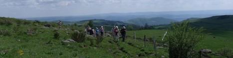Cette année, on a décidé de vivre l'Estive au plus « pré » ! | L'info tourisme en Aveyron | Scoop.it