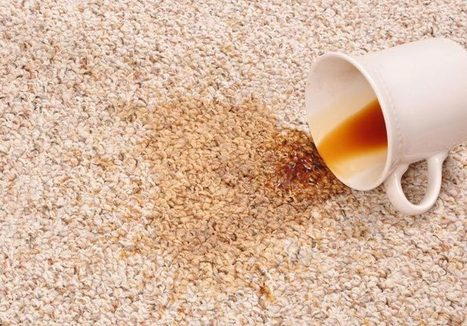 How to Remove Tea and Coffee Stains from Carpet   Carpet Cleaning   Scoop.it