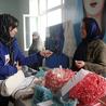 Afghan Women in Media