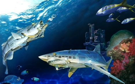 Sorayama Robot Shark Wallpaper   For Art's Sake-1   Scoop.it