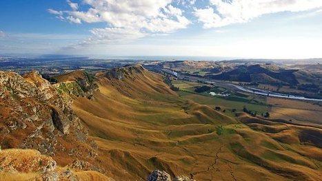 Grape expectations in New Zealand | Vitabella Wine Daily Gossip | Scoop.it