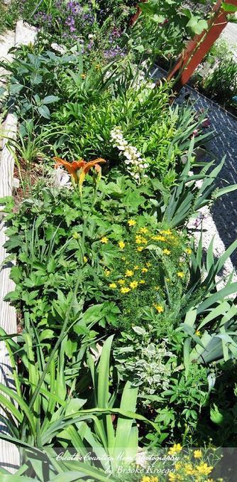 Creative Country Mom's Garden: My Garden Bench and Work Area… | Annie Haven | Haven Brand | Scoop.it