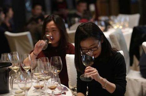 Sassicaia, Ornellaia, Gratamacco...The birth of the Super Tuscan wines | Vitabella Wine Daily Gossip | Scoop.it