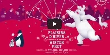 Feu d'artifice du Nouvel an 2016 - Ville de Bruxelles | L'actualité de la Ville de Bruxelles | Scoop.it