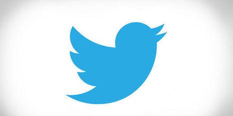 Twitter attaqué en Justice par un développeur utilisant son API | Référencement internet | Scoop.it
