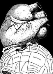 La derrota de la Filosofía - El Mundo.es | FILOSOFIA SEMPRE. PER QUÈ? (Filosofia, pensament, lectura, cultura...) | Scoop.it