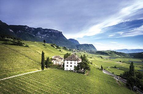 Alto Adige: Back to the future | Vitabella Wine Daily Gossip | Scoop.it