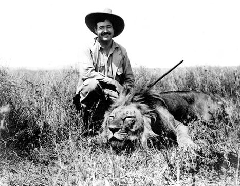 Lions, trophy hunting and the US government - the 27 facts you need to know   Trophy Hunting: It's Impact on Wildlife and People   Scoop.it