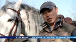 China's rich splash out on horses | Fun with Horses | Scoop.it