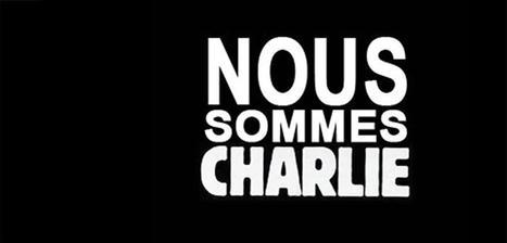 Liberté d'expression, liberté de recherche : témoignez   Actualité des laboratoires du CNRS en Midi-Pyrénées   Scoop.it