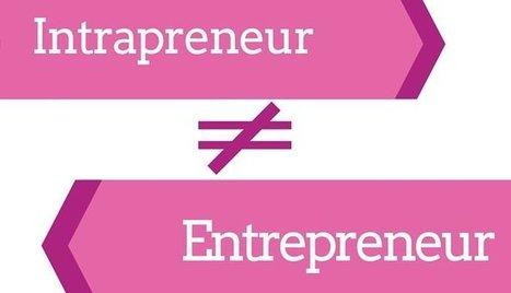 I Am … An Intraprenuer | Intrapreneur, intrapreneurship | Scoop.it
