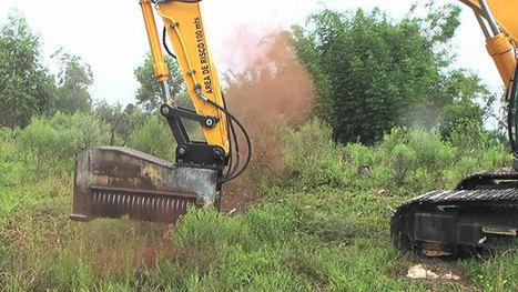 Τρομακτικό μηχάνημα σβήνει ολόκληρα δέντρα με ένα απλό άγγιγμα (Video) | Γεωπονικά | Scoop.it