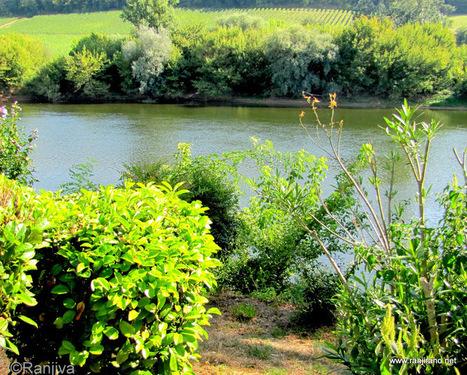 La Dordogne - Le Périgord aux quatre couleurs | Paysages et Fleurs ... | dordogne - perigord | Scoop.it