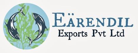 Earendil exports: Welcome | General | Scoop.it