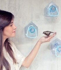 Get Out! Plastic Bird House by Colectivo da Rainha - Design Milk | Eco Reality | Scoop.it
