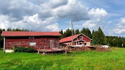 Happiest in the countryside - YLE News | In de Buurt van Geluk | Scoop.it