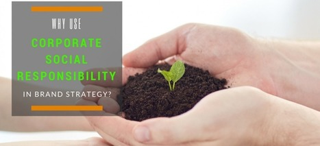 Why Use Corporate Social Responsibility in Brand Strategy? - Stephen Zoeller's Marketing Blog | Corporate Social Responsibility | Scoop.it