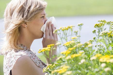 On connait enfin l'origine de l'allergie au pollen (+ vidéo) | Autres Vérités | Scoop.it