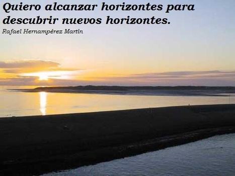 Frases de un Homo Estupidus | Personal and Professional Coaching and Consulting | Scoop.it