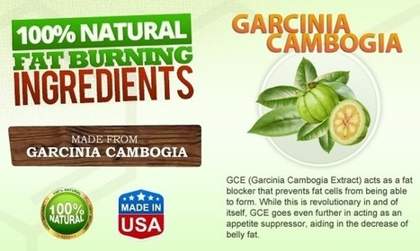 Healthy Choice Garcinia Cambogia Review - Get Free Trial | HEALTH TIPS | Scoop.it