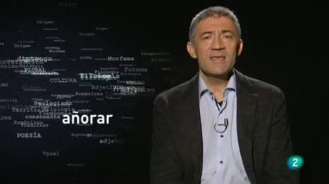 Para Todos la 2 - Etimologias: Añoranza y moriña, Para todos La 2 - RTVE.es A la Carta | Fundamentos Léxicos | Scoop.it