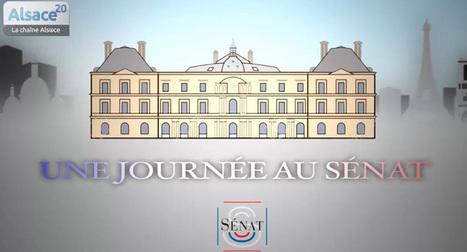 Sénat Junior:consacré à l'éducation CIVIQUE des jeunes citoyens | actions de concertation citoyenne | Scoop.it