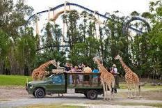 Busch Gardens, Tampa, Floirda   Our Florida House   Scoop.it