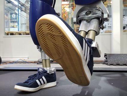 Durus, le robot qui marche comme un humain | Une nouvelle civilisation de Robots | Scoop.it