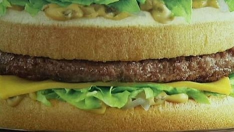 McDonalds to source sustainable beef for burgers | Beneath The Surface | Scoop.it